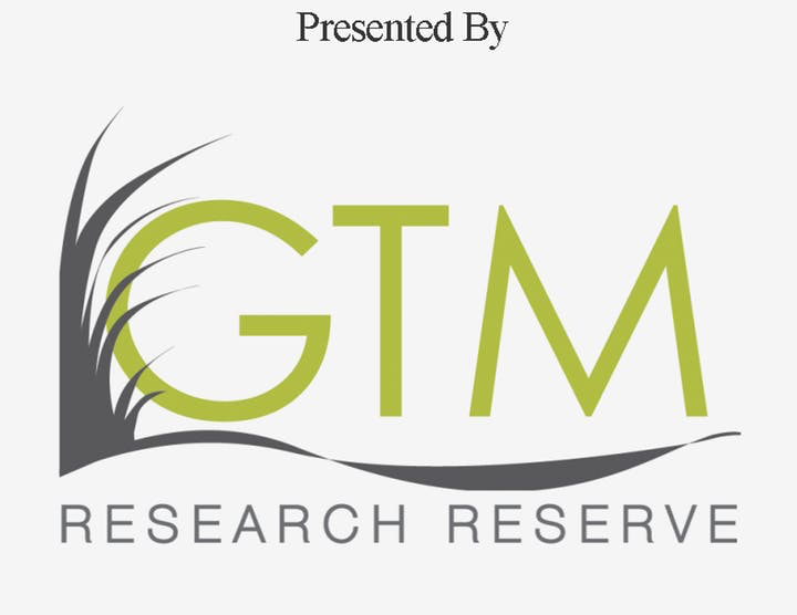 GTM Research Reserve - Logo