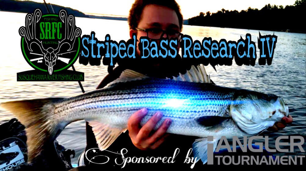 Srfc 2018 Striped Bass Research Iv Ianglertournament